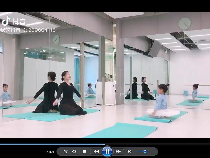 芭蕾舞教学视频展示