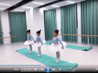 天鹅湖教学视频展示